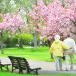 老老介護の4つの問題点と3つの解決策!具体例から安心介護を!