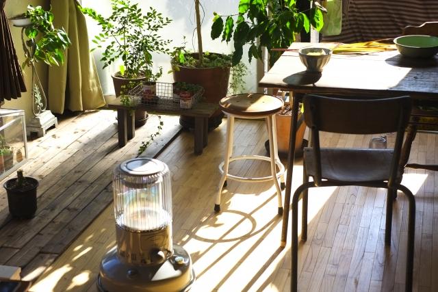 ヒョロヒョロ,観葉植物,仕立て直し